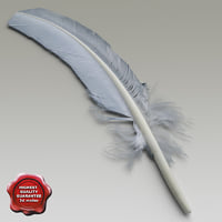 Bird feather V2