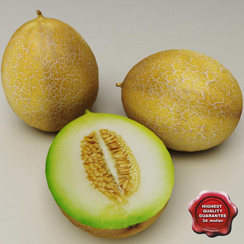 Melon_0.jpg