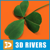 Shamrock by 3DRivers