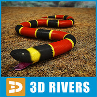 Coral snake by 3DRivers