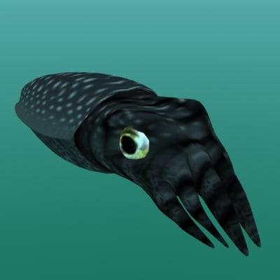 squid_10001.jpg