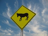 burro crossing street sign 3d model
