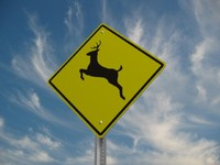 deer street sign 3ds