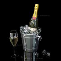 Champagne Moet Chandon ice Bucket