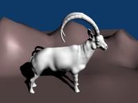 blender ibex