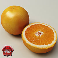 oranges modelled 3d model