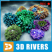 set ricordea 3d 3ds
