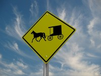 x buggy crossing street sign