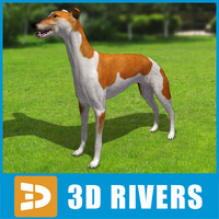 greyhound dogs 3ds