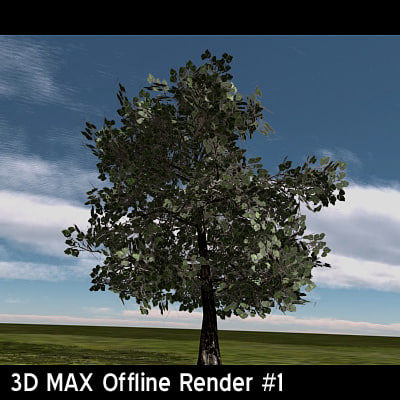 OakTree1Render1.jpg