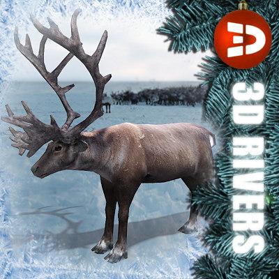 Reindeer_logo.jpg