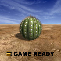 Low Poly - Cactus, round