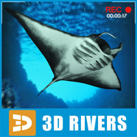 Manta ray by 3DRivers