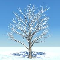 SnowTree 4