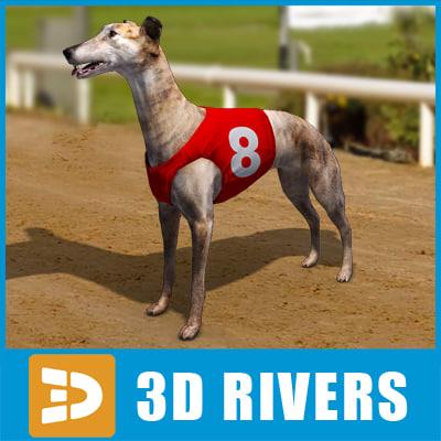 Greyhound_03_logo.jpg