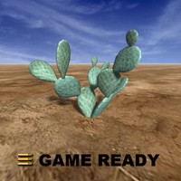 Low Poly - Cactus, beaver tail