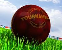 3d model cricket ball
