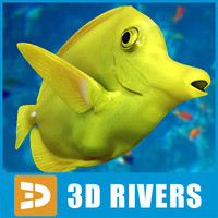 Yellow tang by 3DRivers