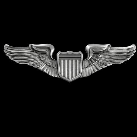 Pilot_badge_01.jpg