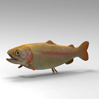 3ds max trout fish