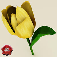 yellow tulip 3d c4d