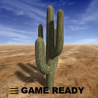 Low Poly - Cactus Saguaro 2