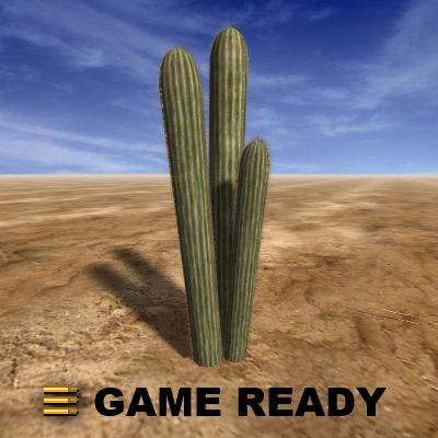 cactus3_a.jpg