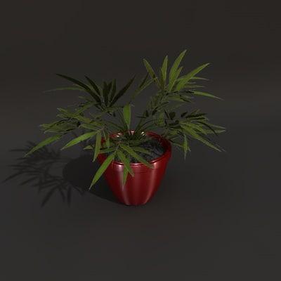 Plant03_out.c4d.zip