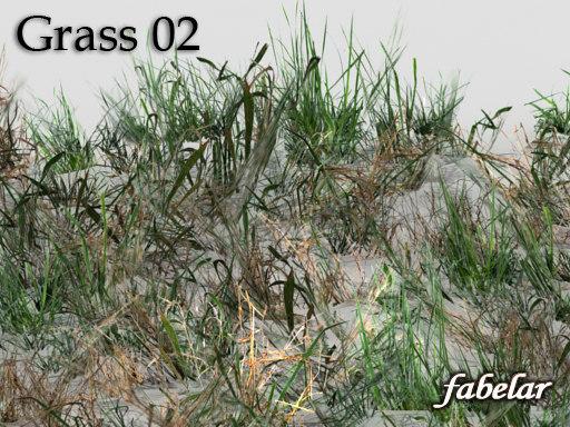 grass_01off.jpg