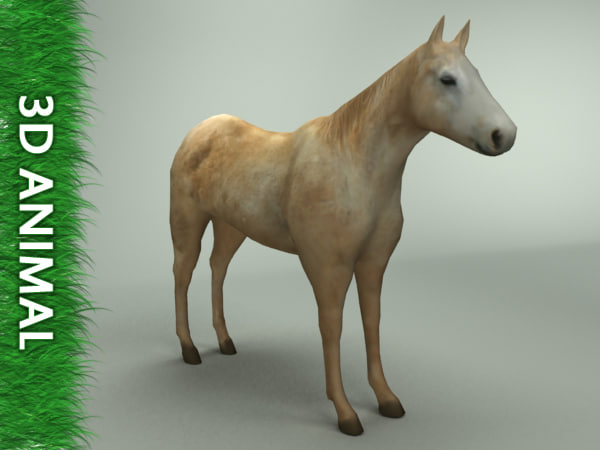 --924_Horse_0011.jpg