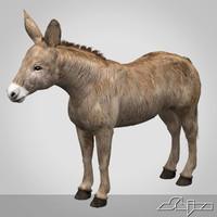 3d donkey
