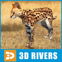 Serval by 3DRivers