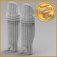 cricket pads 3d model