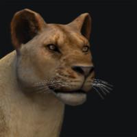 lion 3d 3ds