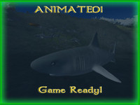 tiger shark animations lod 3ds