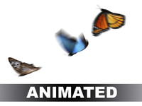 3ds max flying butterflies