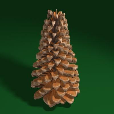 pinecone09_001.jpg