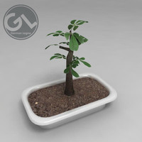 drunk tree bonsai 3d max