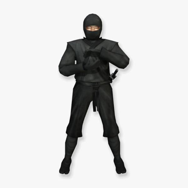 SA_LD_Ninja_1.jpg
