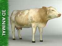 cow arch renderings 3d model