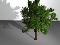 tree c4d