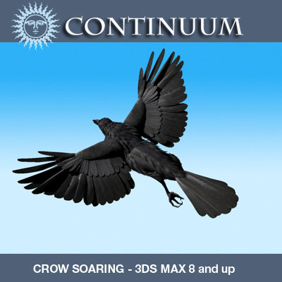 3d model crow soaring rigged v8 - Crow Soaring Model (not rigged)... by r189