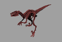 Raptor_Skeleton.3dm