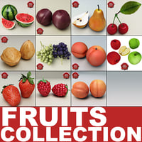 Fruits Collection V1