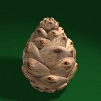 pine cone max