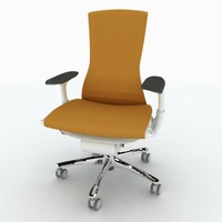 max embody chair