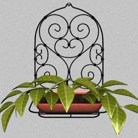 wall accessories plant 3d model