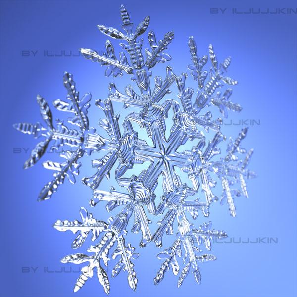 Snowflake Snow Flake 3d Model