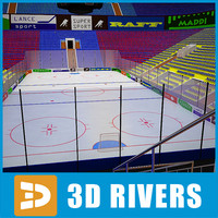 hockey stadium 3d max
