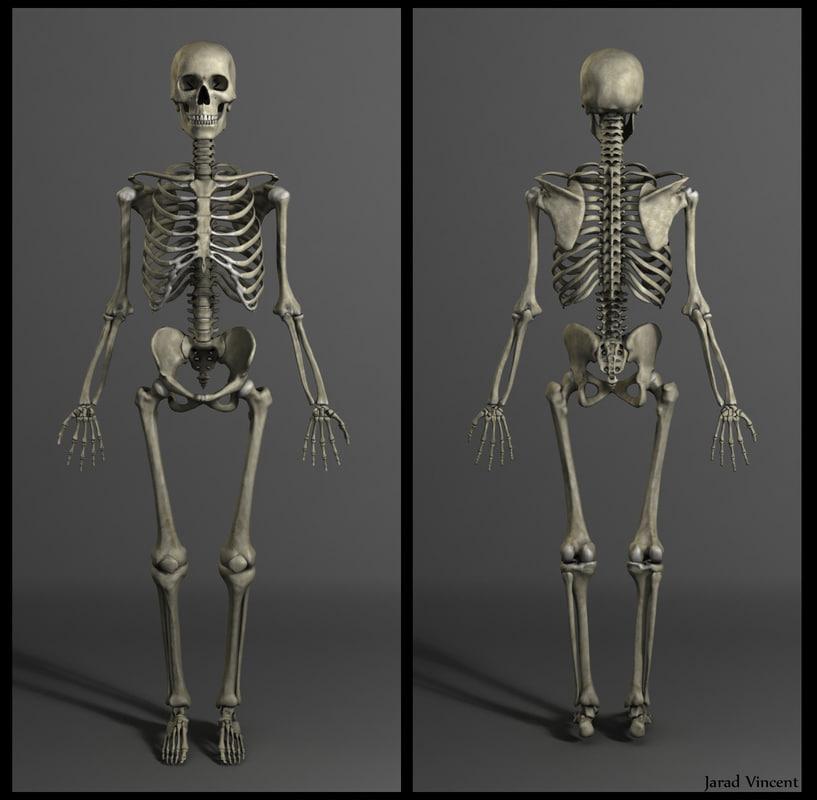 Anatomy for the artist jeno barcsay 7105310 - togelmaya.info